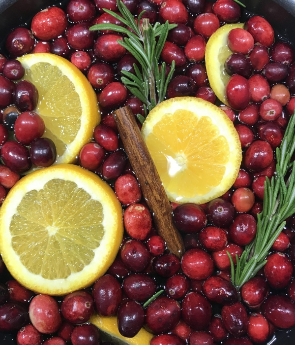 Holiday Memories: Stovetop Christmas Potpourri